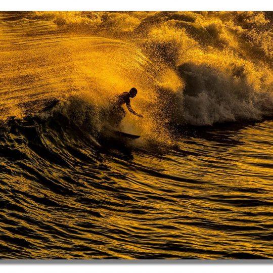 Surfista Dourado - Alexandre Militao
